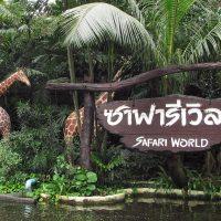 Nikmati Serunya Melihat Binatang Di Safari World Thailand