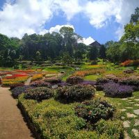 Mae Fah Luang Garden - Taman Indah Di Chiang Rai Thailand